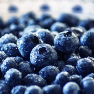 blueberry-3460423_1920resize