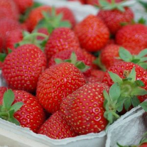 strawberryInContainer2